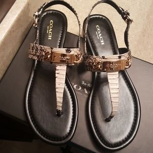 Coach Catherine Snake Sandals